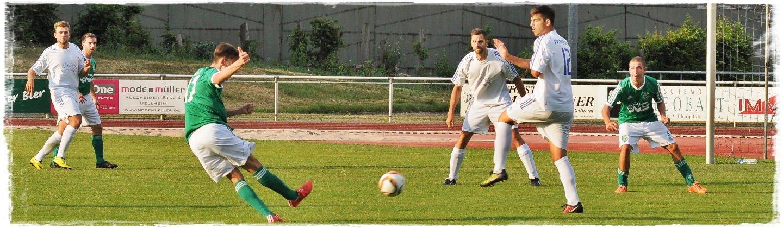 Pfalzfussball.de